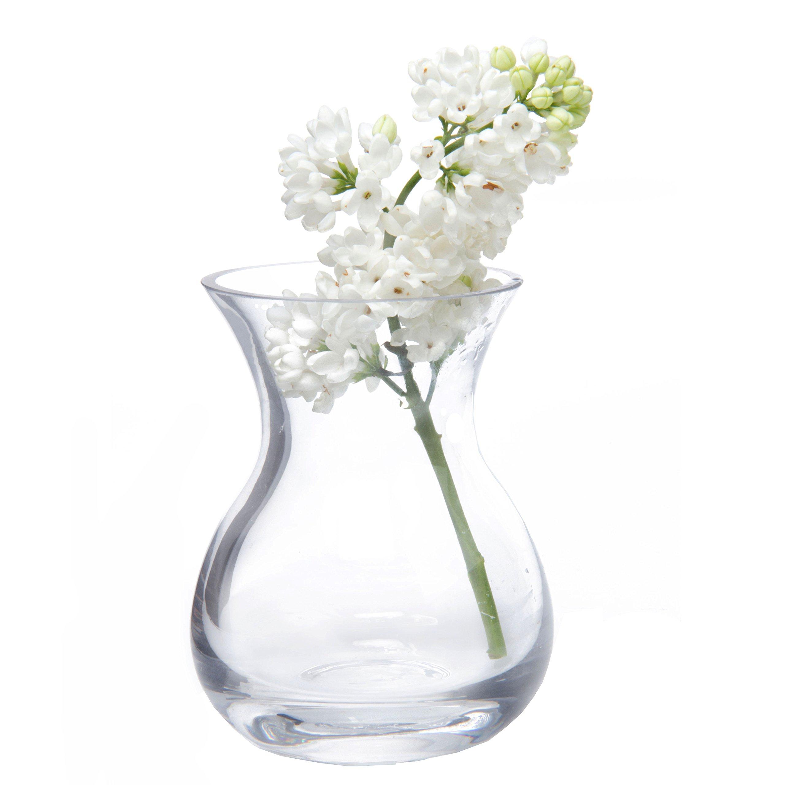 Chive George Shape 4 Unique Clear Glass Flower Vase