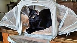 Amazon Com Jet Sitter Expandable Soft Sided Dog Cat Pet