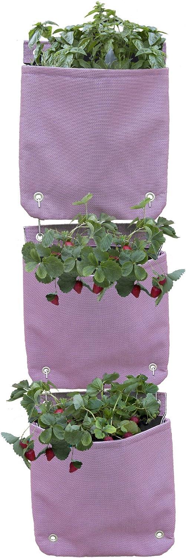 Huerto colgante Veggie Bag. Para fresas, plantas aromáticas ...