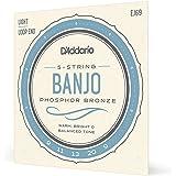D'Addario EJ69 Phosphor Bronze 5-String Banjo Strings, Light, 9-20