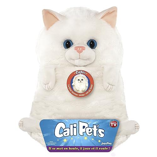 Dujardin 22107 - Cali Pets - Chat Persan - 35 Cm