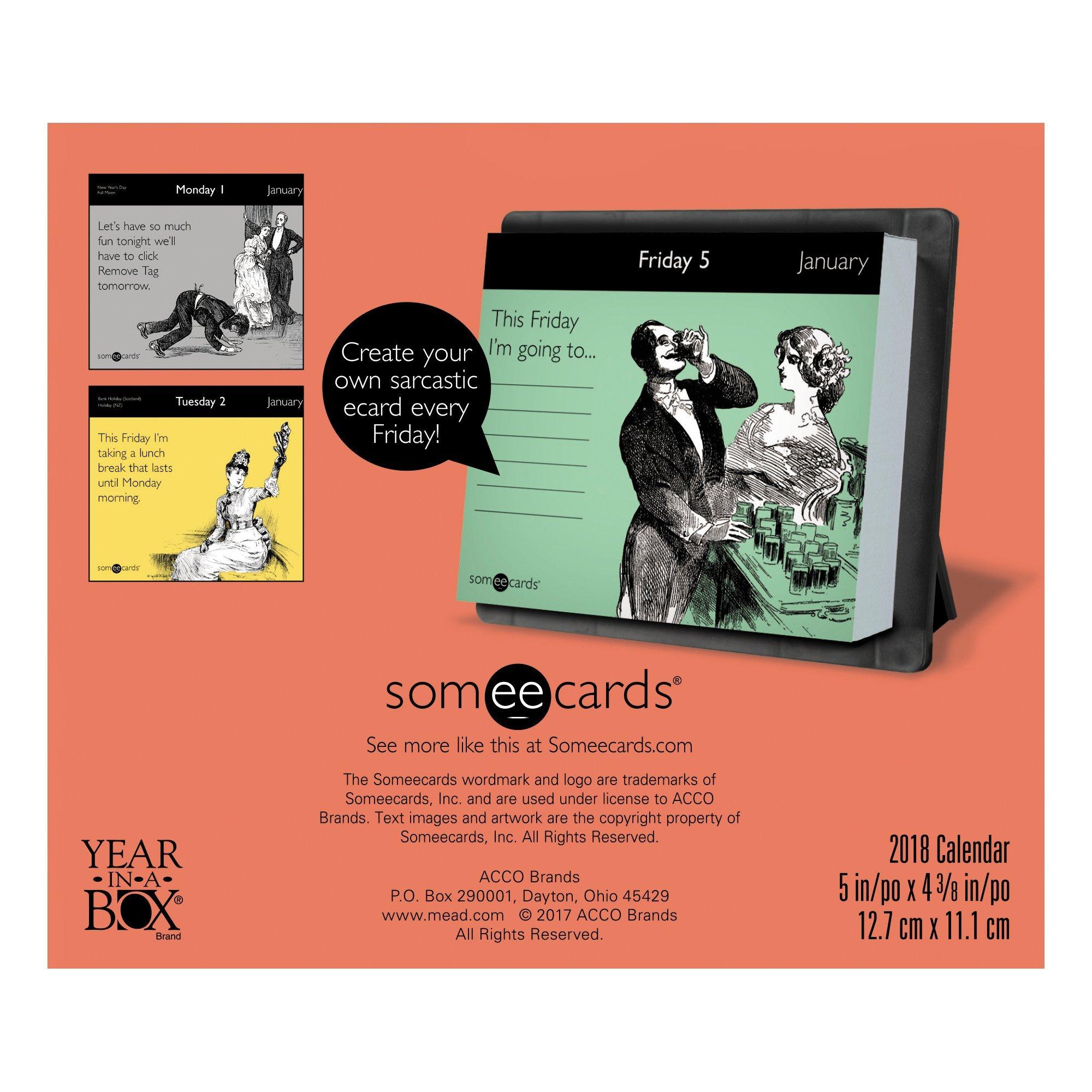 2018 Someecards Calendar (Year-In-A-Box): Year-in-A-Box ...