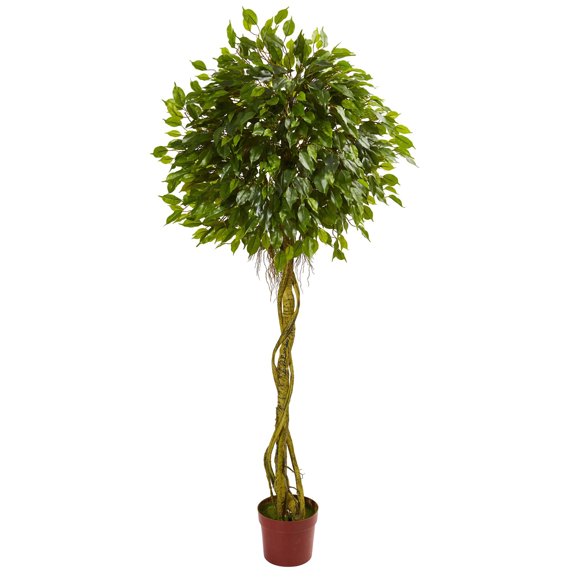 Nearly Natural 6' Ficus Artificial Topiary Tree, UV Resistant (Indoor/Outdoor) 6, Green