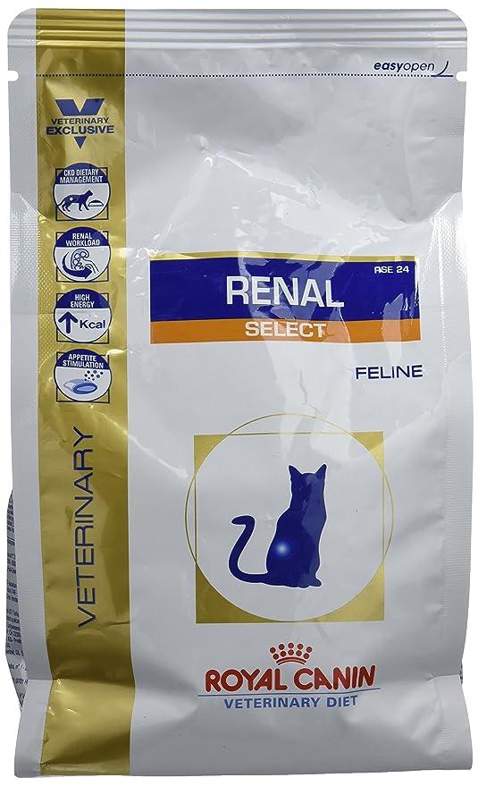 ROYAL CANIN Veterinary Diet Cat Renal Select Comida para gato: Amazon.es: Productos para mascotas