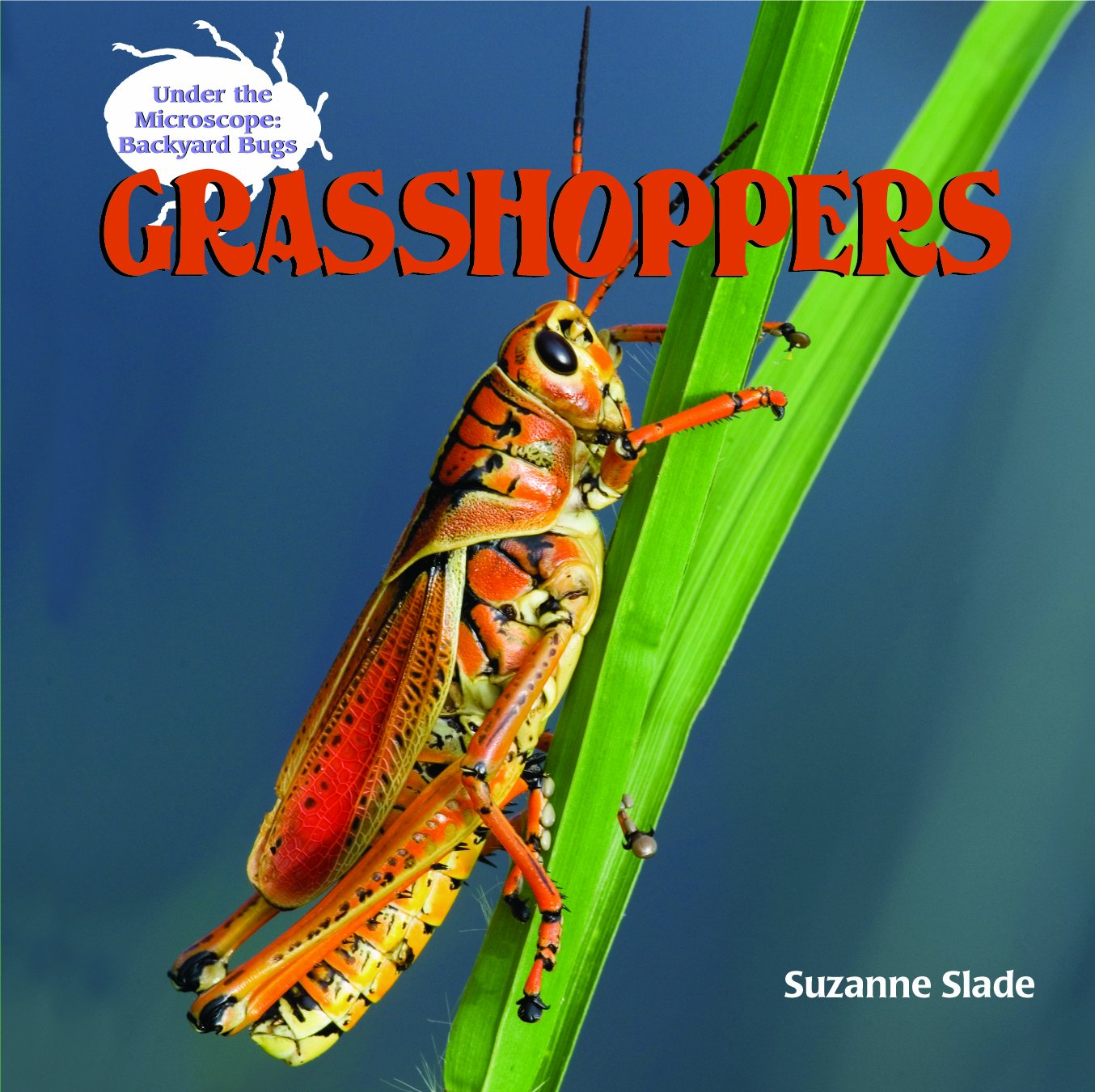 Download Grasshoppers (Under the Microscope: Backyard Bugs) pdf