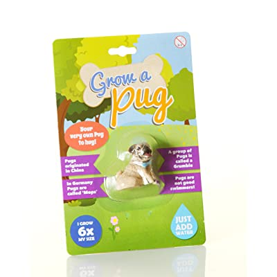 Boxer Gifts Grow A Pug, Other, Brown: Kitchen & Dining [5Bkhe1006493]