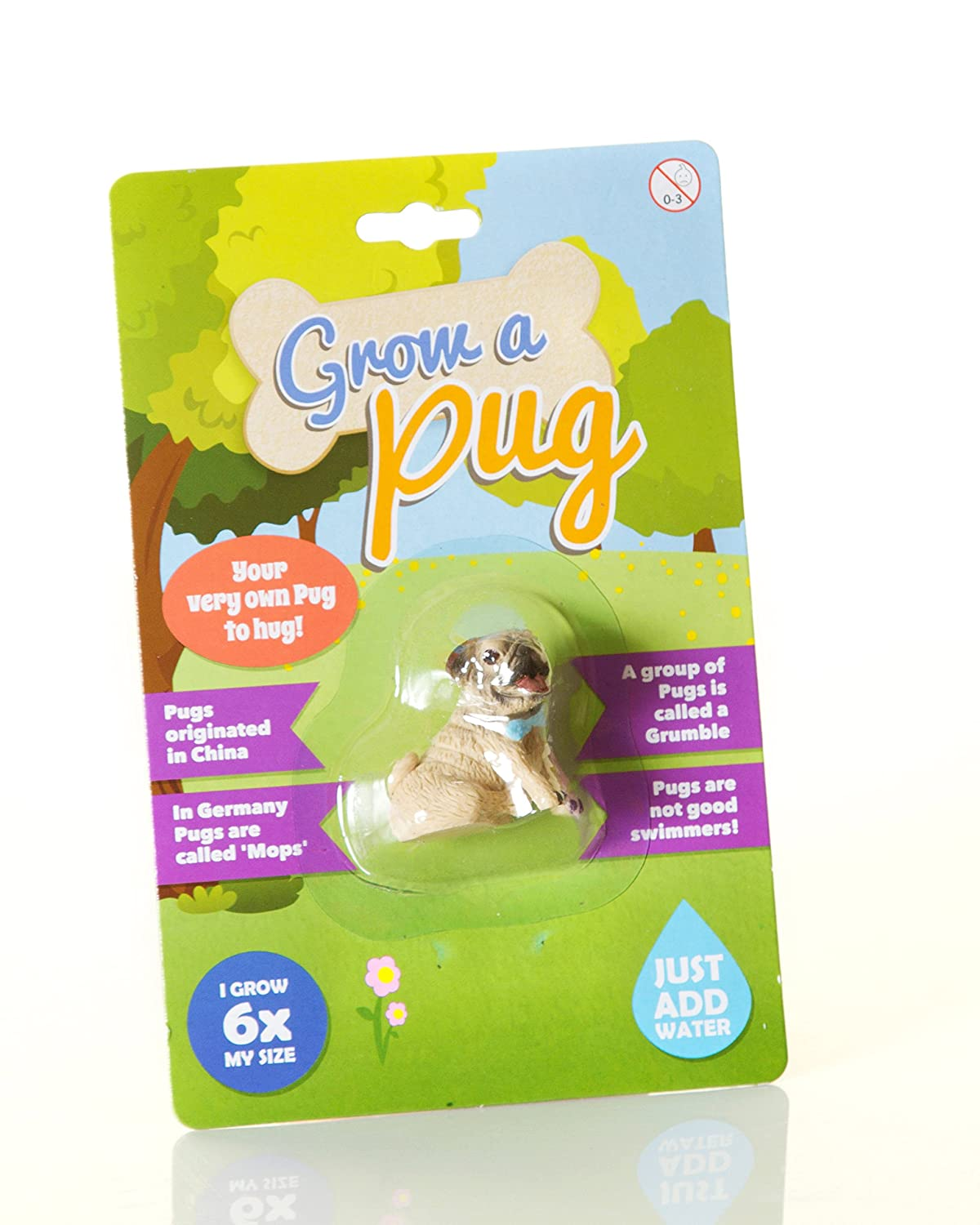 538814f0e63 Boxer Gifts Grow A Pug, Other, Brown: Amazon.co.uk: Kitchen & Home