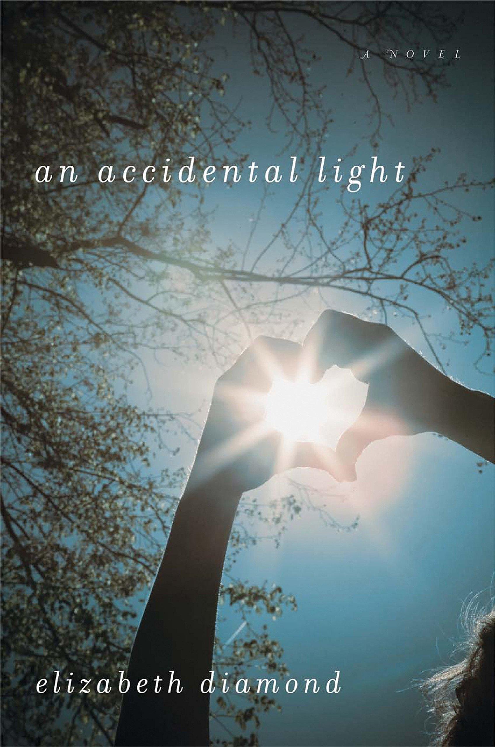 Download An Accidental Light pdf