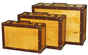 Amazon.com: Old Vintage Suitcase, Set of 3: Home & Kitchen
