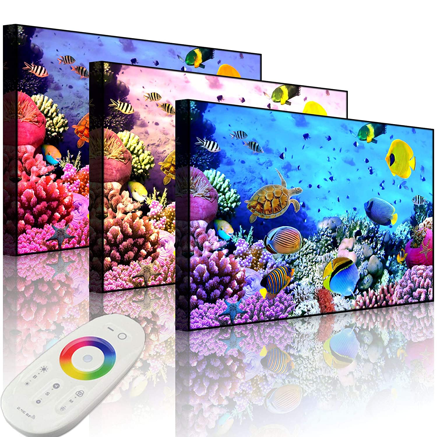 Lightbox-Multicolor   LED Bild Leuchtbild   Bunte Fische über Korallenriff   60x40 cm   Front Lighted