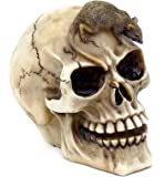 Realistic Witch Skull with Mouse Figurine