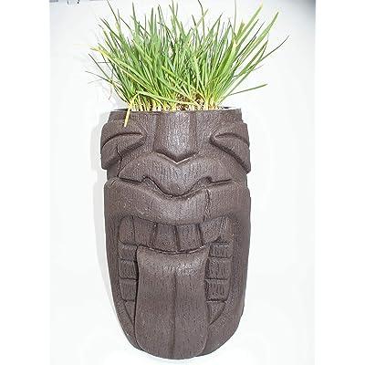 Tongue Tiki Planter : Garden & Outdoor