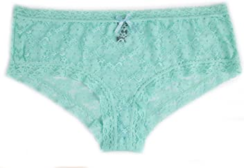 074f5c6c65d Sunset Intimates Womens Plus Size Blue Lace Hipster Panties