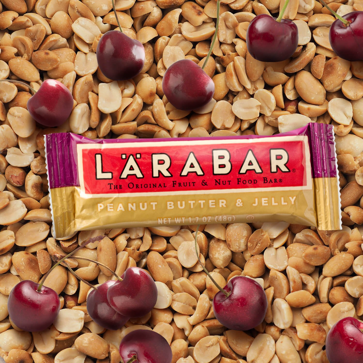 Larabar Gluten Free Bar, Peanut Butter & Jelly, 1.7 oz Bars (16 Count), Whole Food Gluten Free Bars, Dairy Free Snacks by LÄRABAR (Image #6)