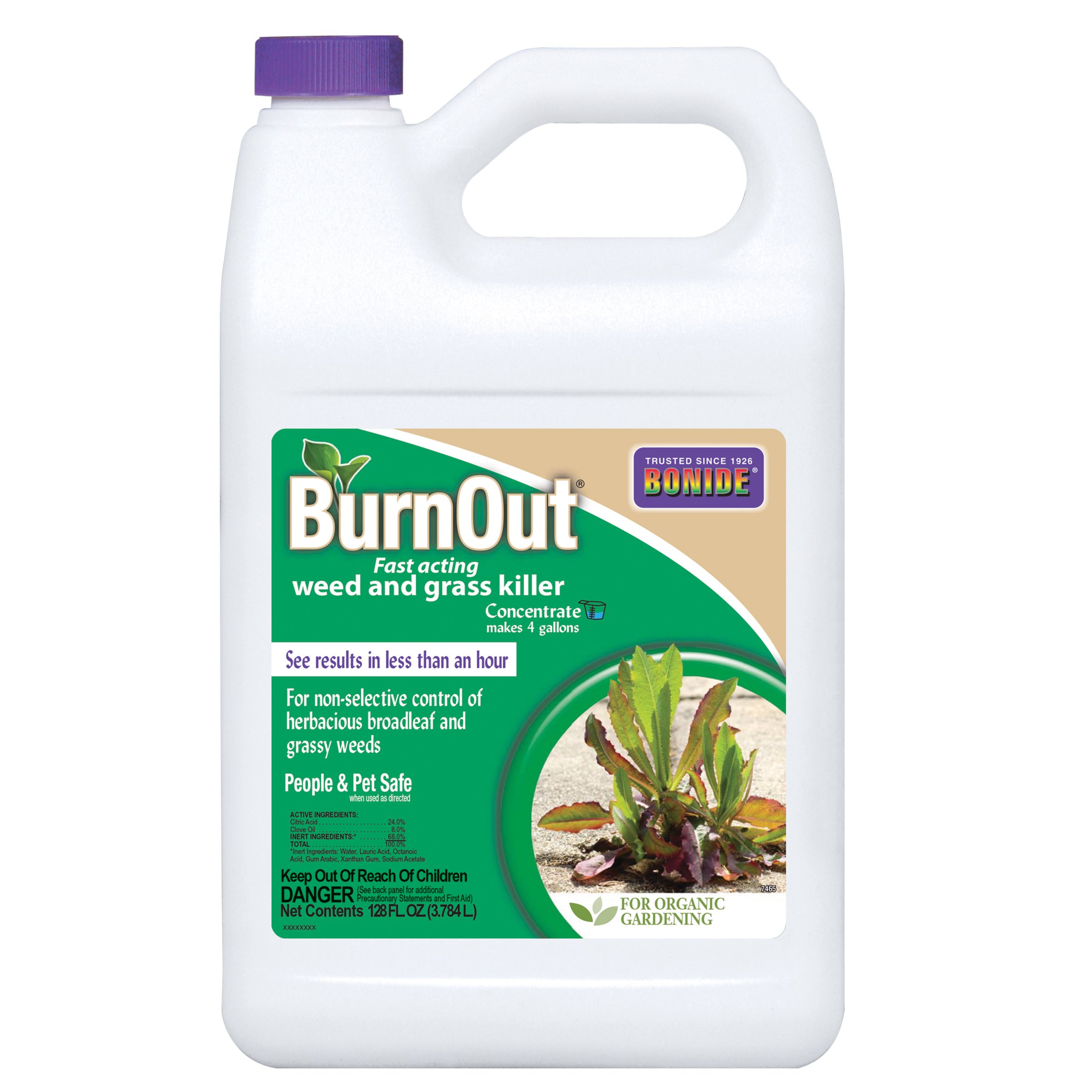 Bonide (7465) Burn Out Weed and Grass Concentrate Killer, 1 gallon