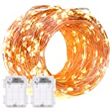 Amazon Price History for:DecorNova 60 LED IP44 Waterproof Copper Wire String Lights with Timer and 3AA Battery Case, 19.7-Feet, Warm White (Set of 2)