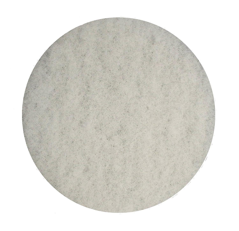 """BISSELL BigGreen Commercial 437.051BG Polish Pad for BGEM9000 Easy Motion Floor Machine, 12"""", White"""