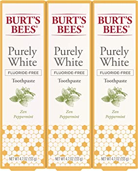 3-Count Burt's Bees Fluoride Free Purely White Natural Flavor Toothpaste