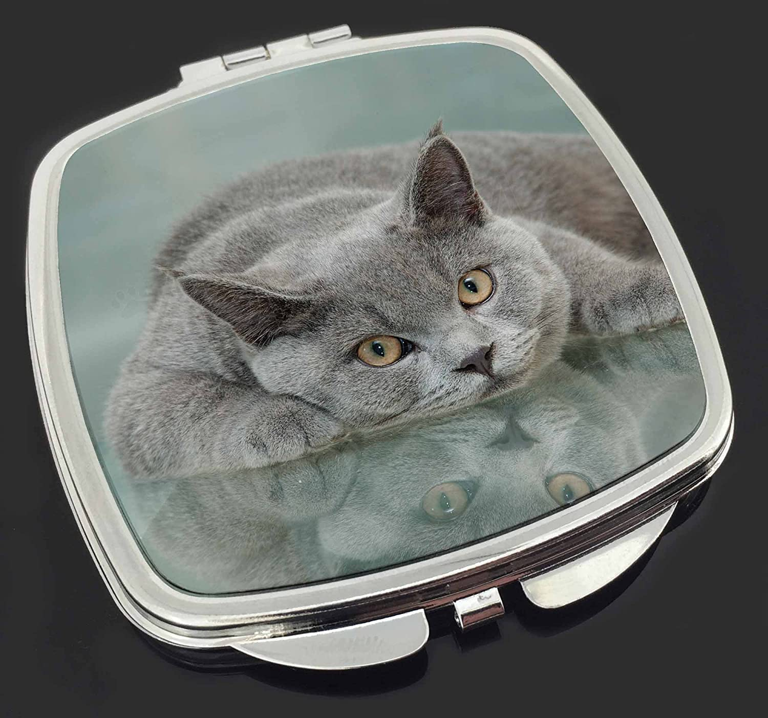 British Blue Cat Laying on Glass Make-Up Compact Mirror Stocking Filler Gift Advanta Products