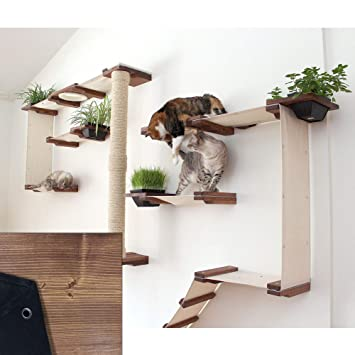 Bon CatastrophiCreations Cat Mod Garden Complex Handcrafted Wall Mounted Cat  Tree Shelves With Planter For Cat Grass