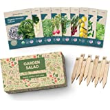 Certified Organic Vegetable Seeds - 9 Heirloom Seeds for Planting Vegetables - Seed Packets & Gift Box - Cherry Tomato, Romai