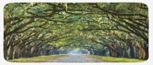 Ambesonne Forest Kitchen Mat, Tranquil Pathway Strong Spring Trees Serene Nature Trekking Theme, Plush Decorative Kitchen Mat with Non Slip Backing, 47