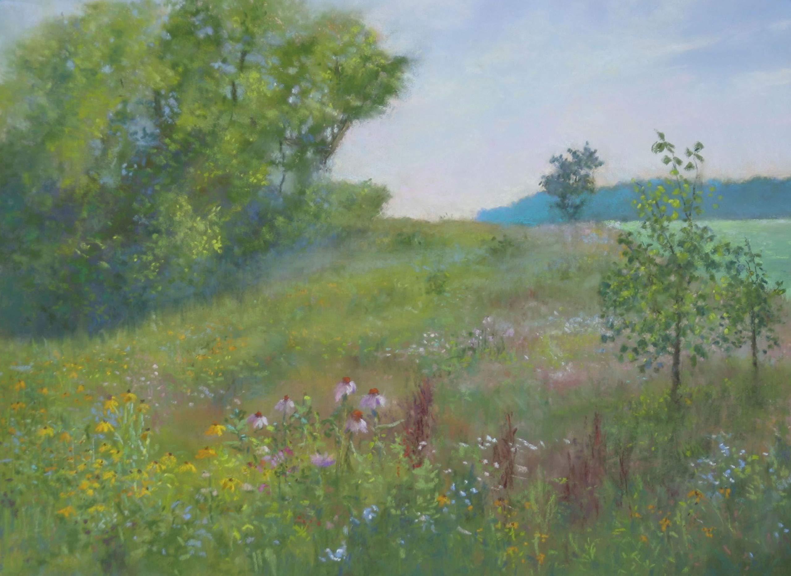 Wildflower Wonders by