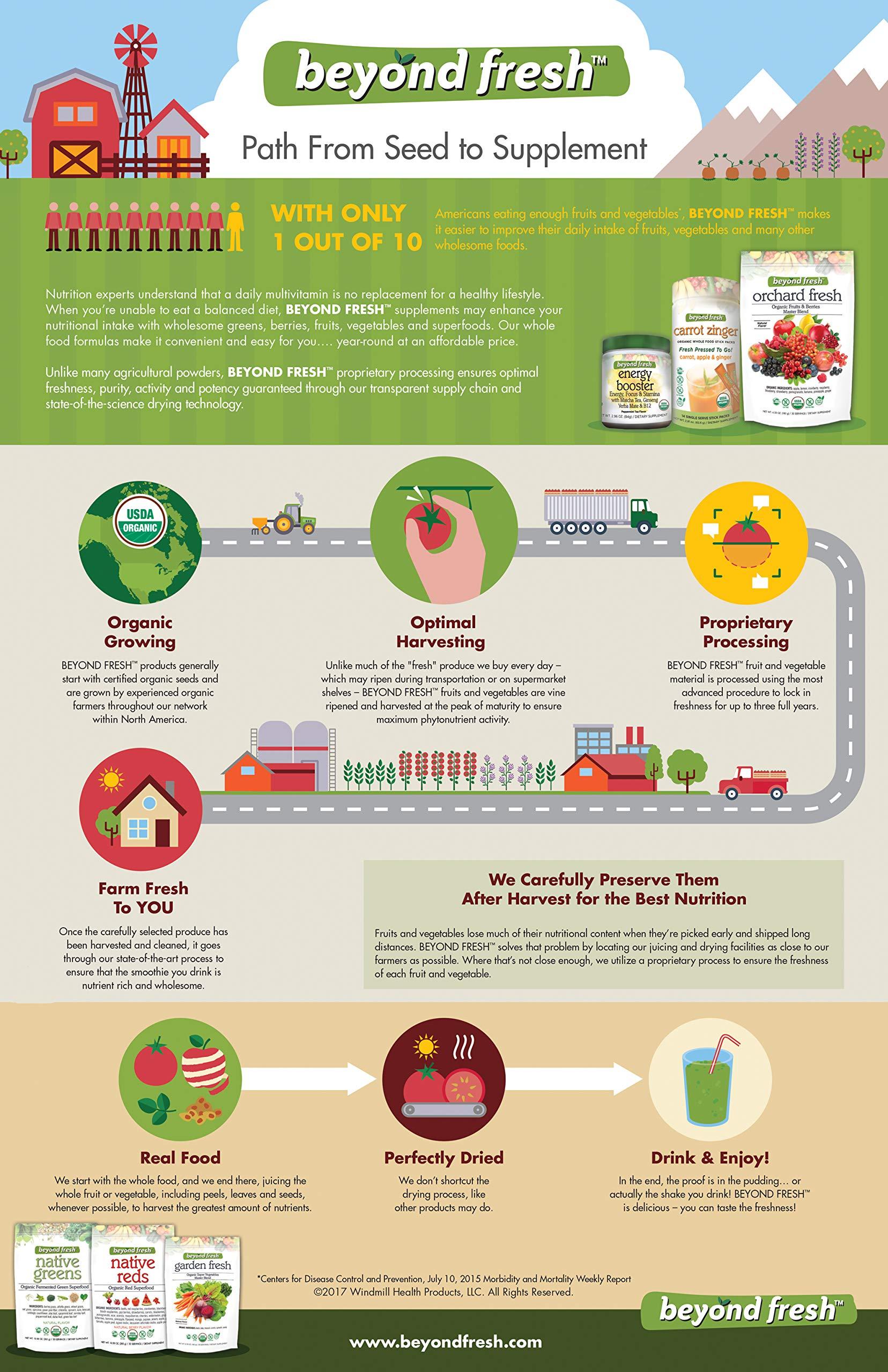 Garden Fresh Organic Super Vegetables Master Blend Natural Flavor by Beyond Fresh, 180 Grams, 180 Gram by BEYOND FRESH