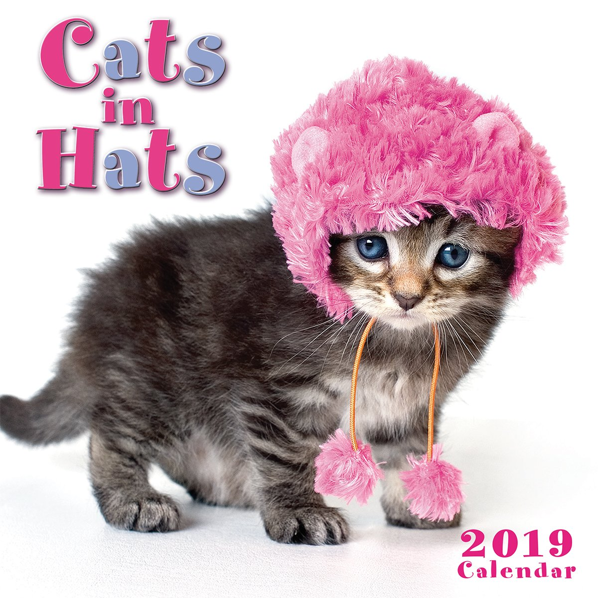 by Sellers Publishing 2019 Cats in Hats Mini Calendar 7x7 CS-0462