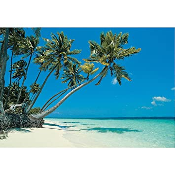 amazon com tropical beach backdrop banner 9 ft x 6 ft vinyl