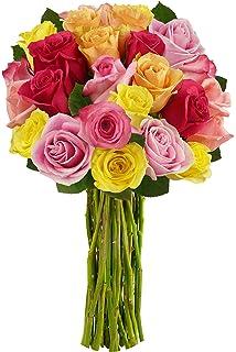 Benchmark Bouquets 2 Dozen Rainbow Roses, No Vase