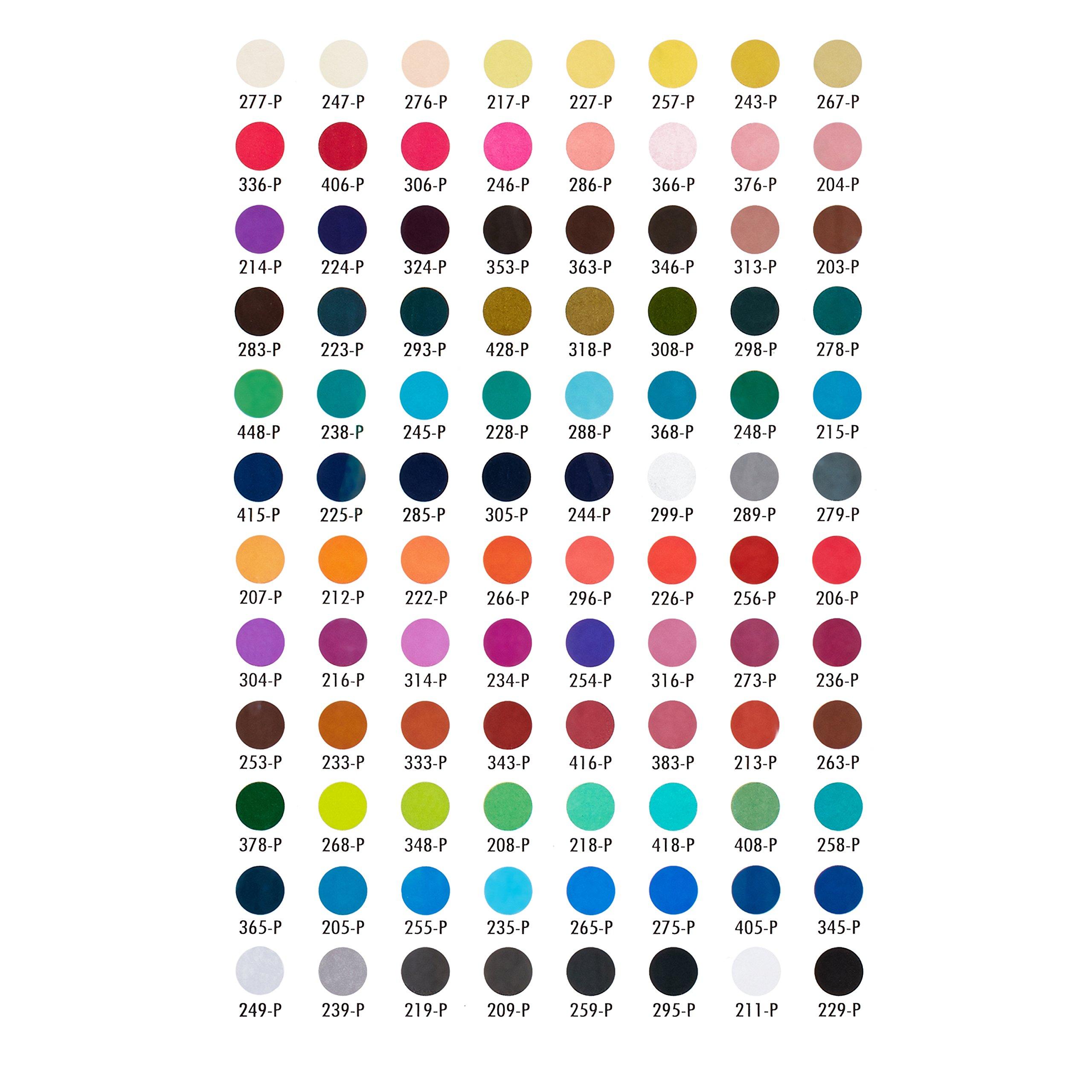 Prismacolor 27055 Premier NuPastel Firm Pastel Color Sticks, 96-Count by Prismacolor (Image #5)