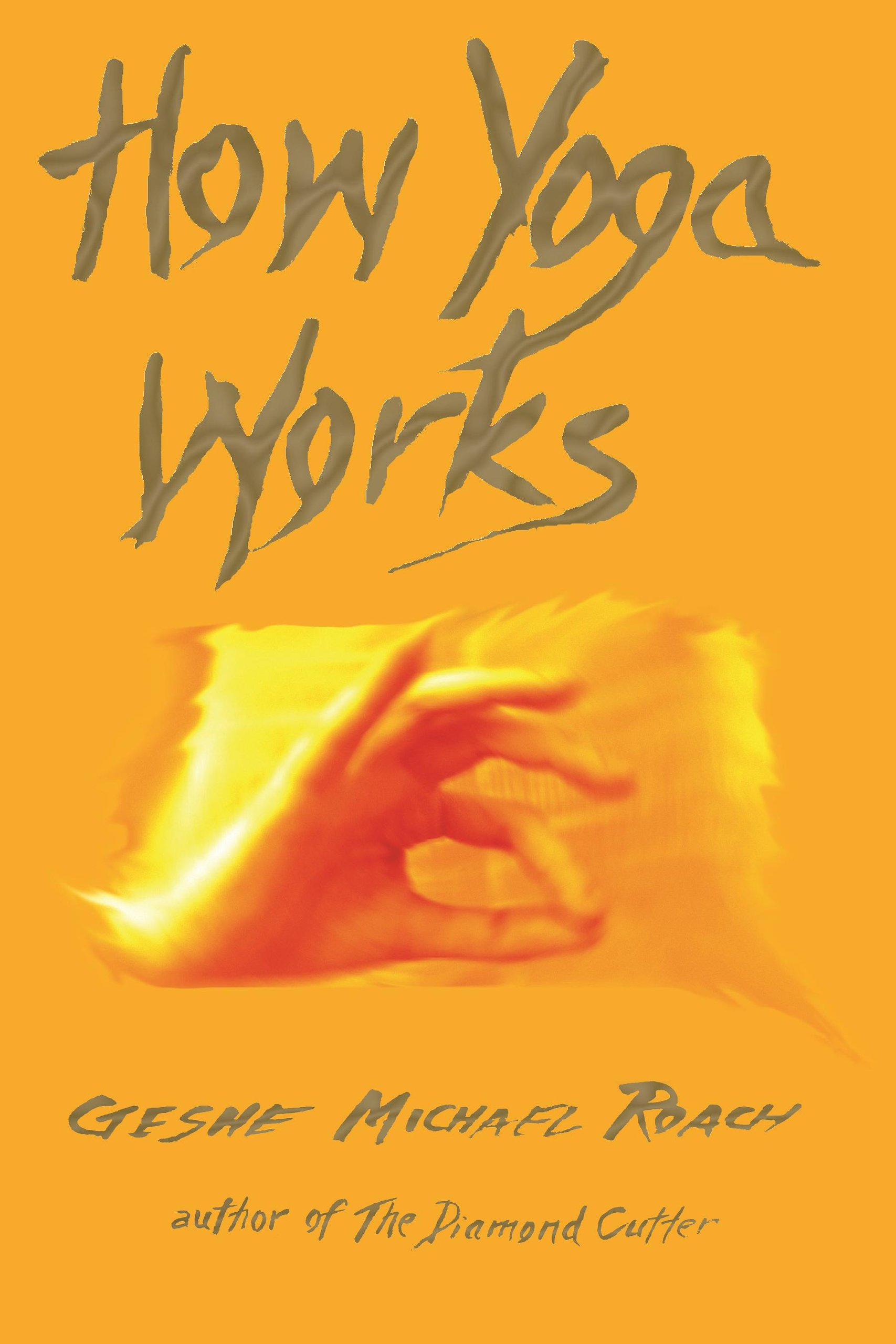 Image result for How Yoga Works by Michael Roach