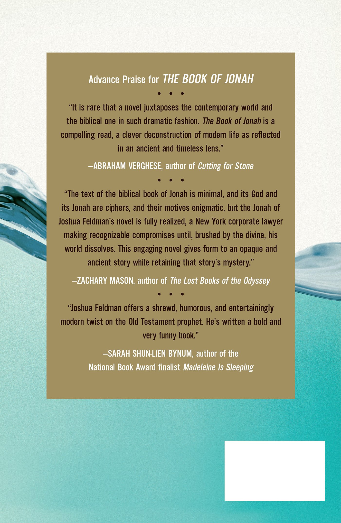 The Book Of Jonah: A Novel: Joshua Max Feldman: 9780805097764: Amazon:  Books