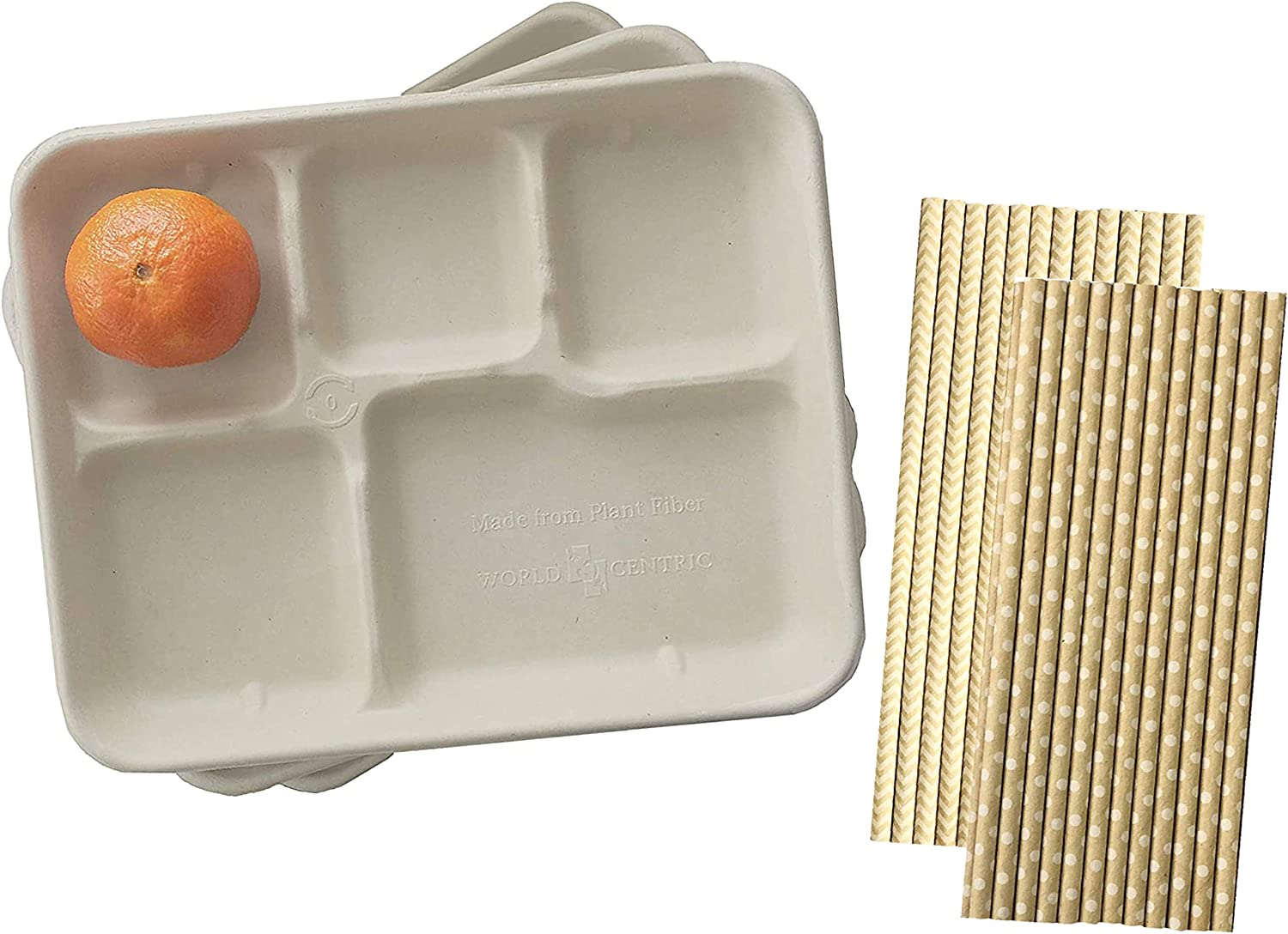 Compostable Paper 5 Compartment School Lunch Trays - Retro Style Kraft Brown Paper and Paper Drinking Straws - 24 Trays and 50 Straws