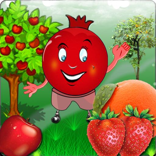 Fruit Juicer ()