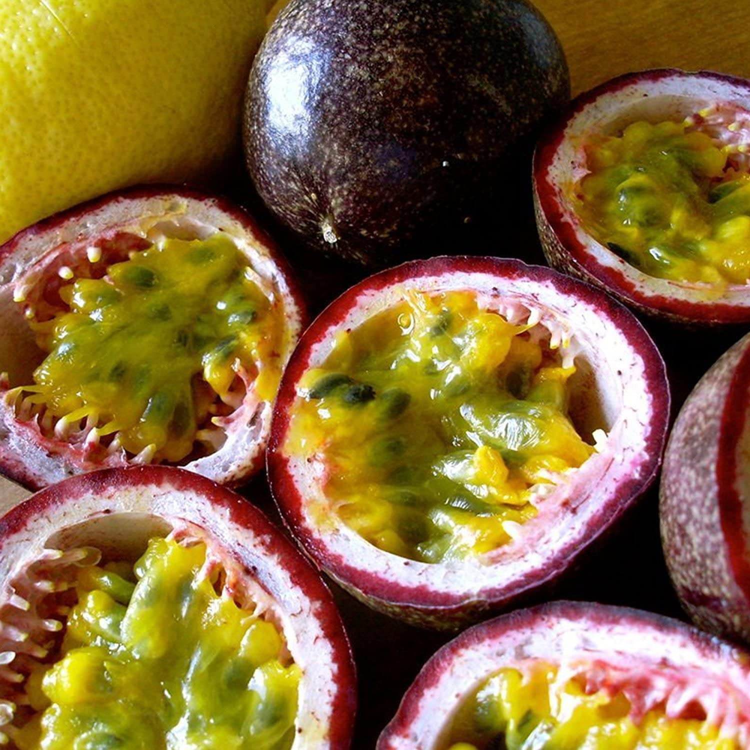 Purple Passionfruit Seeds (Passiflora edulis) 10+ Tropical Fruit Seeds