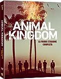 Animal Kingdom - Stagione 1 (3 DVD)