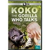 Koko: The Gorilla Who Talks [DVD] [Import]