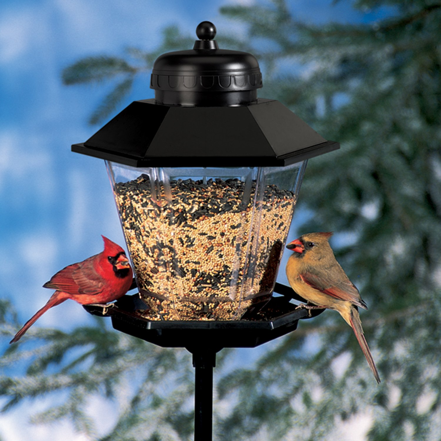 bird pole squirrel cool feeding sold proof universal gazebo mounted compact kit station designs feeders feeder
