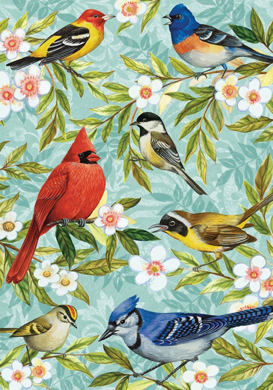 """Toland Home Garden 112582 Bird Collage 12.5 x 18 Inch Decorative, 12.5"""" x18"""", Garden Flag (12.5"""" x 18"""")"""