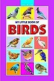 Birds (My Little Book)