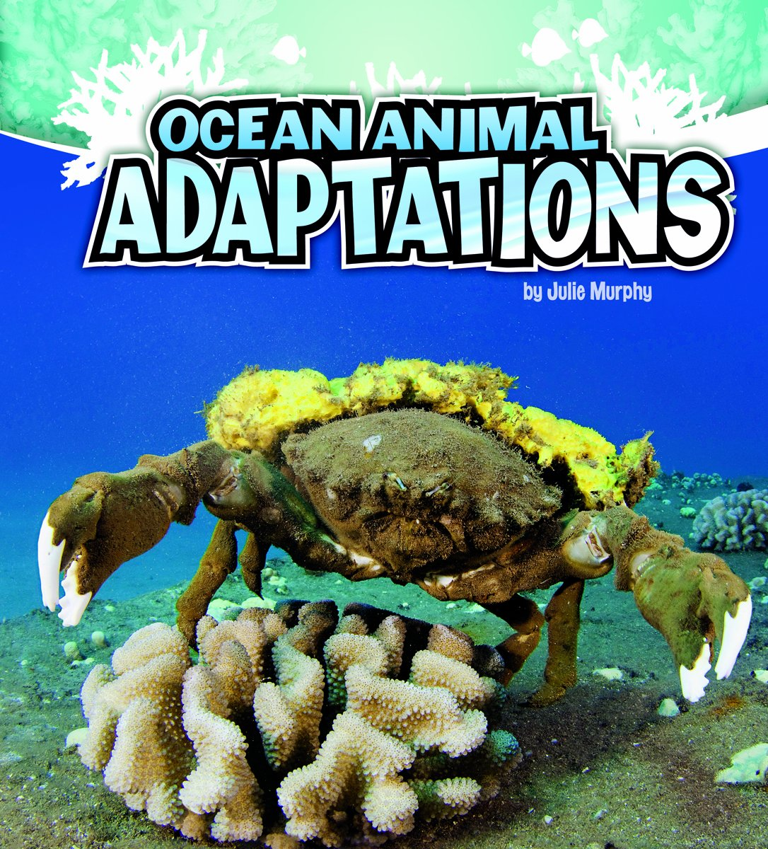 ocean animal adaptations amazing animal adaptations julie