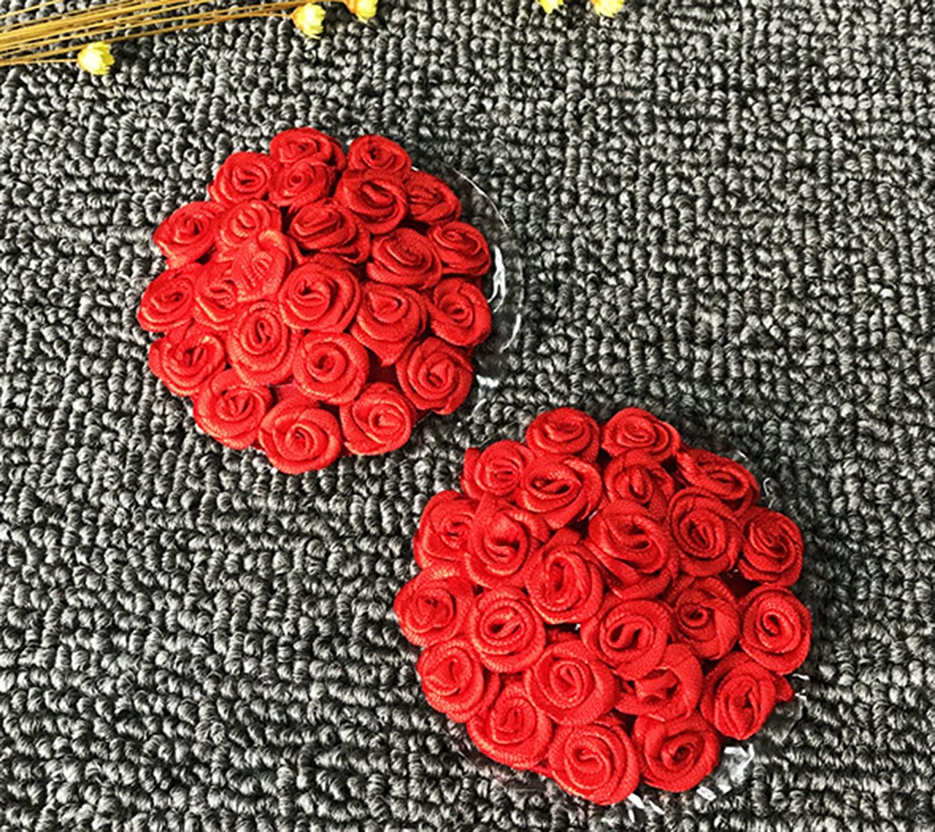 Avivnor Rose Nipple Cover /& Lace Mask For Valentines Day,Lover Gift Charming woman