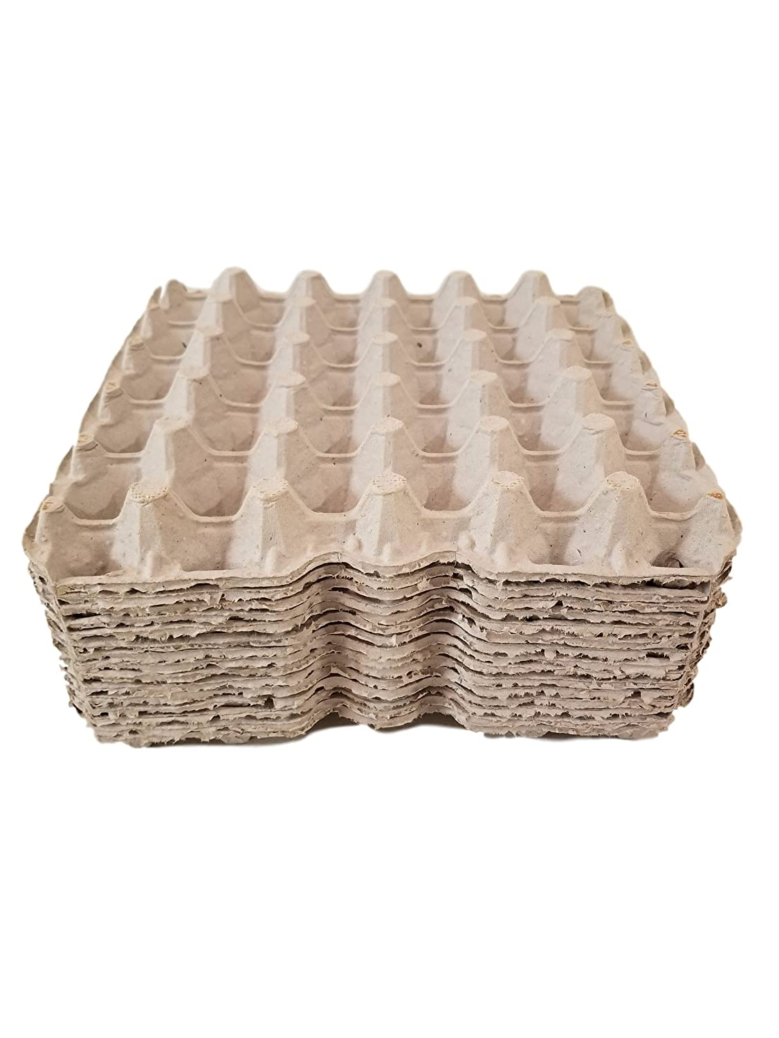Biodegradable Pulp Fiber Egg Flats for Storing up to 30 Large or Small Eggs/Makes a Great Home for Roach Colony by MT Products (15 Pieces)