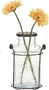 Creative Co-Op DE3875 Glass vase in Metal Stand with Metal Frog Lid