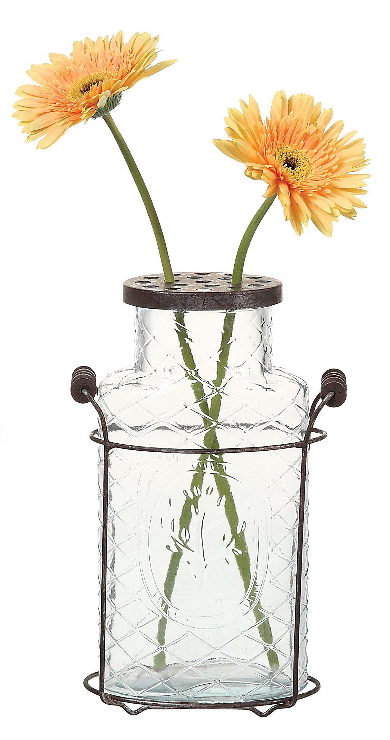 "Creative Co-Op DE3875 Glass vase in Metal Stand with Metal Frog Lid - Metal & glass construction Holder is 6.5""L x 3.25""W x 7.75""H Jar is 5""L x 3""W x 10""H - vases, kitchen-dining-room-decor, kitchen-dining-room - 81jSxaxVsVL -"
