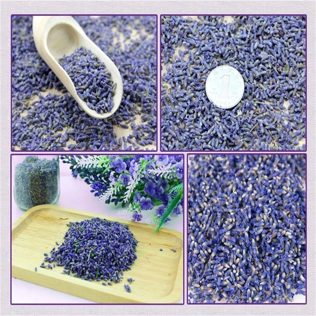 1 Pound Fragrant Blue Lavender Dried Lavander Buds Sachets Dry Flowers Herb by ReginayouCBJ (Image #3)