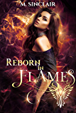 Reborn In Flames (English Edition)