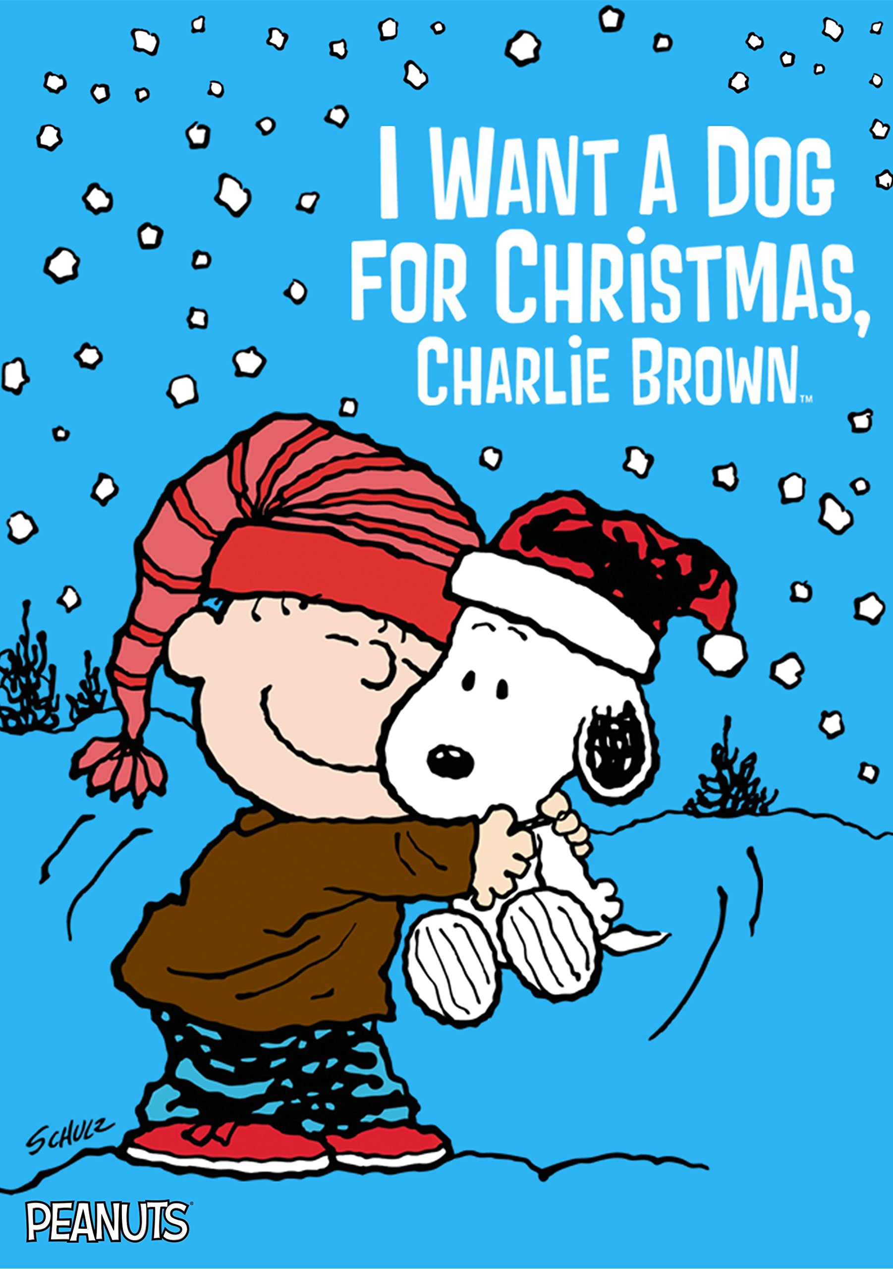 Amazon.com: I Want a Dog for Christmas, Charlie Brown: Jimmy Bennett ...